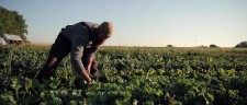 """Slow Food in Canada"" documentary premiered across Canada on Terra Madre Day 2014"