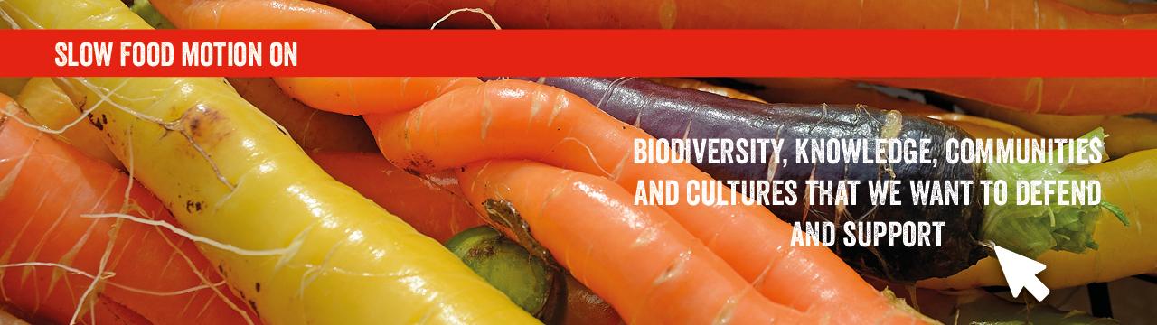 Biodiversity Banner